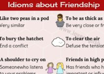 Idioms about Friendship