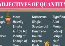 Adjectives of Quantity