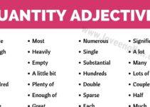 Adjective of Quantity