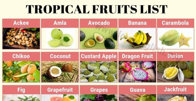 Tropical Fruits Names
