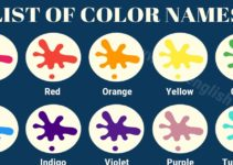 Color Names