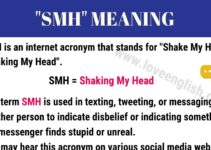 SMH Meaning