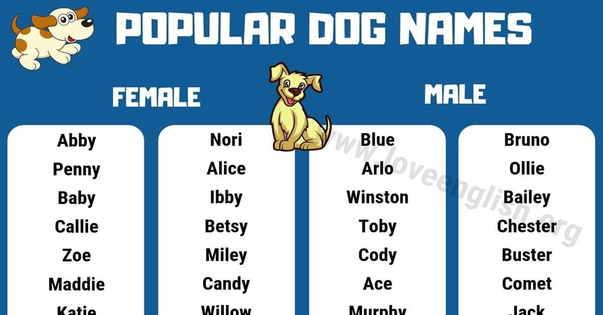 Dog Names