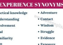 Experience Synonyms