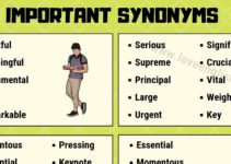 Important Synonyms
