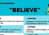 Believe Synonym