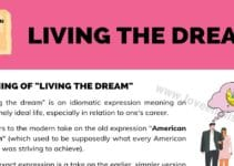 "Living the Dream: Meaning & Examples of the Idiom ""Living the Dream"" 3"