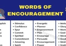 Words of Encouragement: 200 Best Motivational Words to Motivate You 3