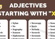 Adjectives that Start with X